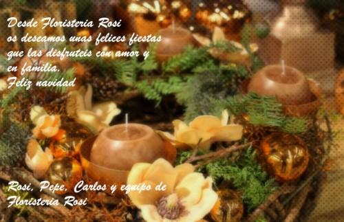 Floristeria Rosi Navidad